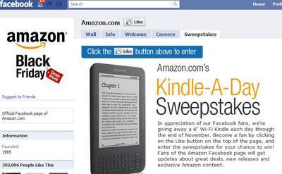 AmazonKindle201011.jpg